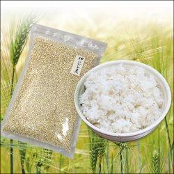 画像4: 【送料無料】 国産 押はだか麦 1kg×5袋 うるち性 大麦