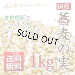画像1: そばの実 1kg 蕎麦 ソバの実【メール便送料無料】納期:即発送