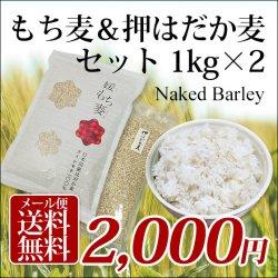 画像1: 【送料無料】 国産 もち麦&押はだか麦 媛もち麦 食べ比べセット 1kg×2袋